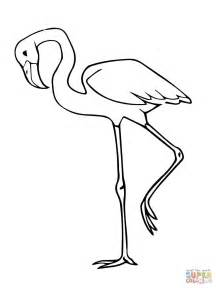 flamingo coloring pages 301 moved permanently