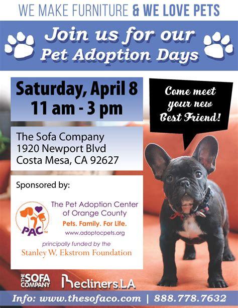 the sofa company costa mesa sofa company adoption event the pet adoption center of