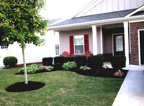 front yard landscaping plants sun home dignity - Front Yard Trees Sun