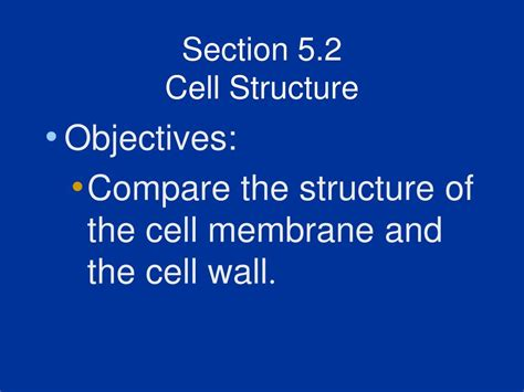 cell structure and function section 5 3 ppt biology chapter 5 cell structure and function
