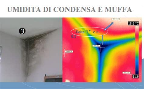 come isolare una parete interna dalla muffa muffa umidita soluzione muffa umidita soluzione a