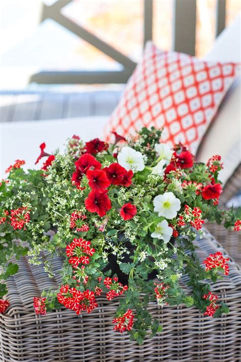 Southern Flower Gardens Tips For Potted Flowers Southern Living Ready To