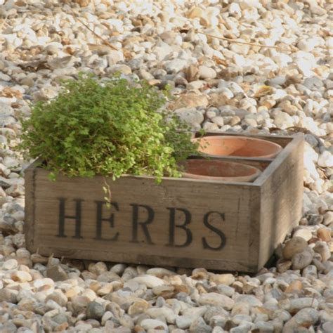 herb boxes wooden herb box garden and outdoor pinterest