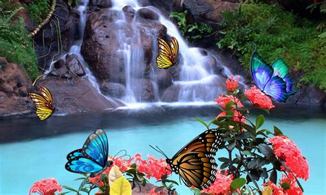 butterfly  wallpaper  android apk
