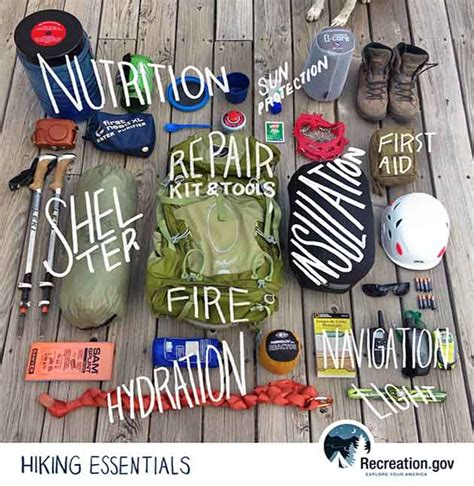 ten kitchen essentials to take along on a holiday recipesupermart hiking essentials infographic