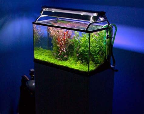 aquarium design application home accessories newhouseofart com home accessories