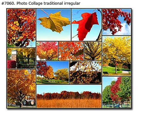 Traditional Photo Collages Samples 5