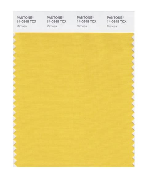 what is pantone buy pantone smart swatch 14 0848 mimosa