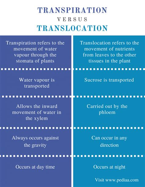 Difference between transportation and translocation kotaksurat xylem phloem venn diagram images how to guide and refrence ccuart Image collections
