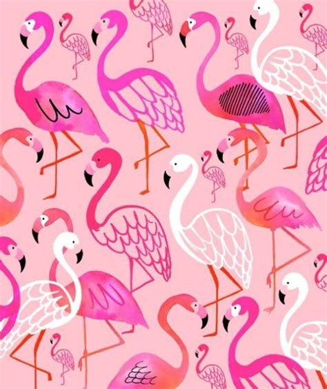 flamingo wallpaper pattern the 25 best flamingo fabric ideas on pinterest