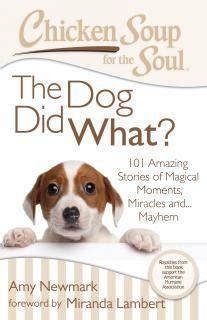 chicken soup for the soul the dog really did that 101 stories of miracles mischief and magical moments ebook chicken soup for the soul the dog did what