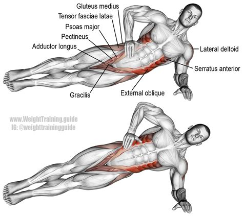 lying side hip raise an isolation push exercise that works many muscles muscles worked