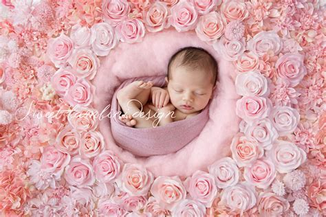 Bj Digita Pink digital backdrop newborn rosa flower wall