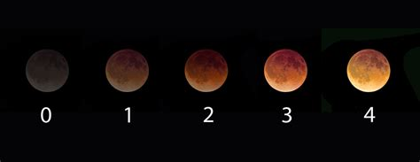 what color is the moon what color is the moon a simple science project for