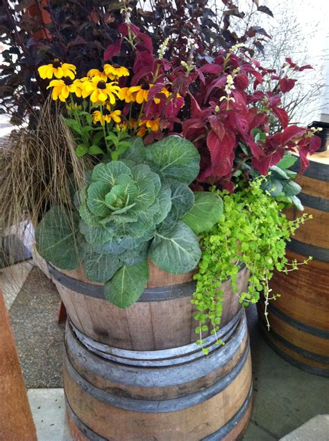 the whiskey barrel planters 187 home decorations insight