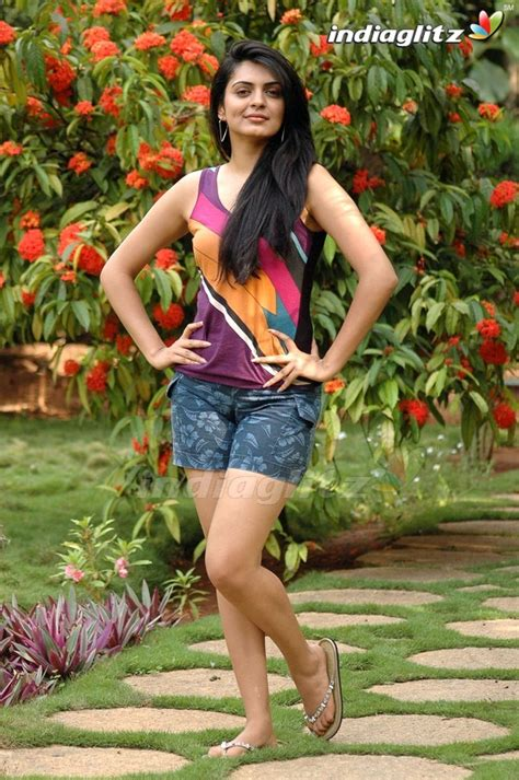 telugu niharika photos niharika photos kannada actress photos images gallery