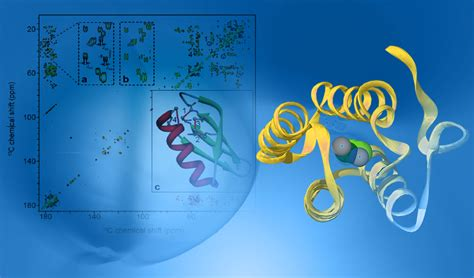 protein nmr high field trosy 15n nmr and protein structure the resonance