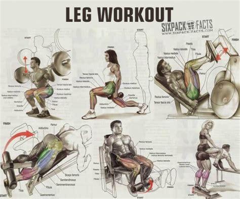 best workout program for fitness program for legs programs
