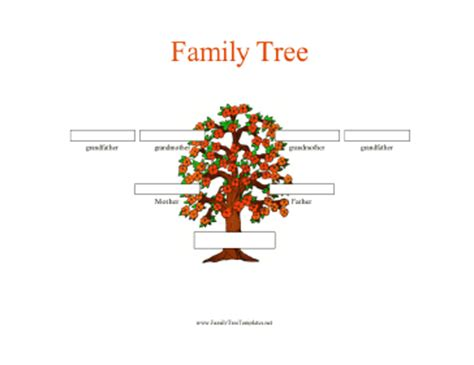 3 Generation Family Tree Template Word 3 generation family tree in color template