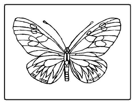 Coloring Page Butterfly by Free Printable Butterfly Coloring Pages For
