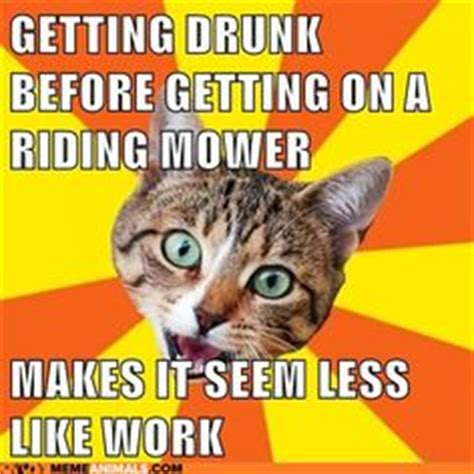 Bad Advice Meme - 1000 images about bad advice cat don t listen to him on