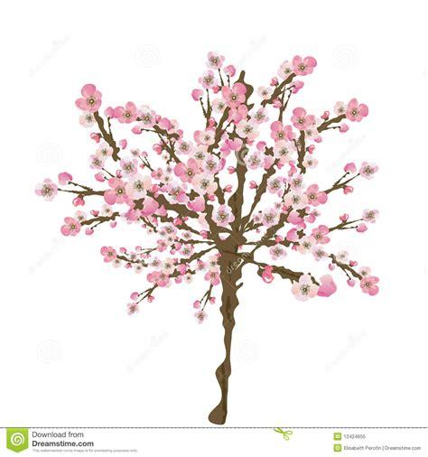 Tree Branch Wall Sticker sakura tree royalty free stock photo image 12424655
