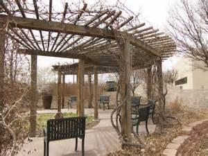 Japanese Pergola Plans by Grape Arbor Rio Rancho Waterwise Garden