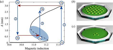 pattern formation research david lloyd s paper on pattern formation in ferrofluids to