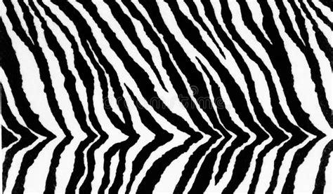 Peau De Zèbre by Texture De Fond D Impression De Textile De Z 232 Bre Photo
