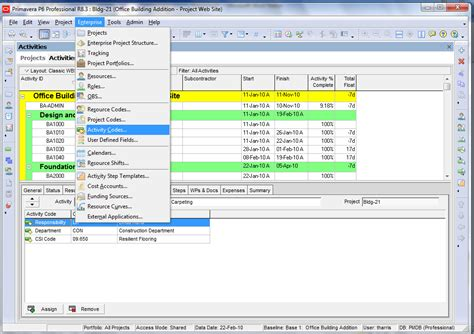 the code how to set up and use activity codes in primavera p6