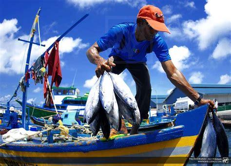 imagenes graciosos de pescadores las cooperativas de pescadores que participaron en el