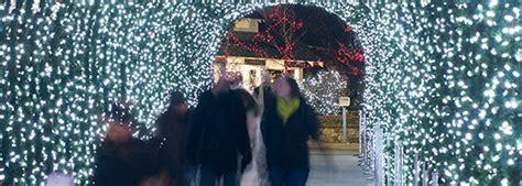 pnc festival of lights cincinnati zoo pnc festival of lights archives the cincinnati zoo