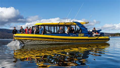 dragon boat hobart tasmanian seafood seduction