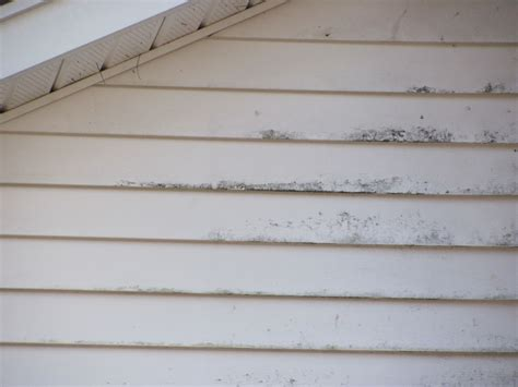 how to remove siding from a house how to remove mold from house siding 28 images how to remove mold mildew stains on