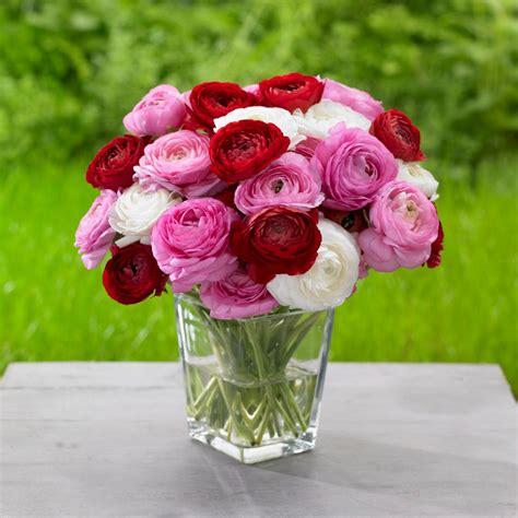 Lasting Flowers For Vases by Lasting Cut Flowers Hgtv