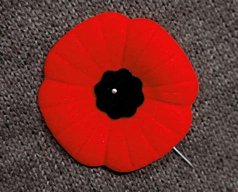 why canadians wear poppies for remembrance day timeline