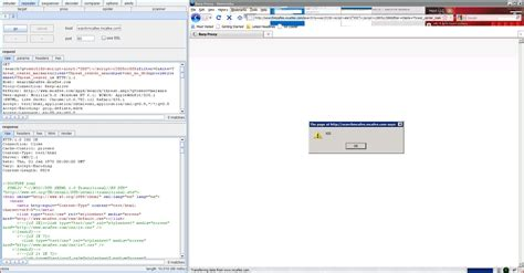 tutorial xss injection xss reflected cross site scripting cwe 79 capec 86