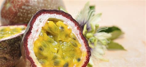 fruits n passion top tips for growing passionfruit flower power