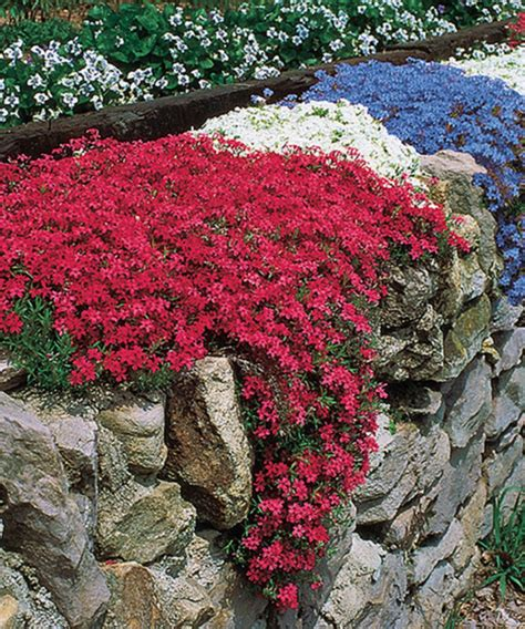 flower beds in front of house ideas 7819 decorathing