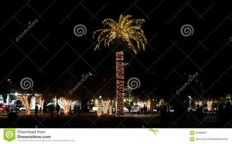 charleston south carolina christmas lights christmas lights decorate marion square in charleston
