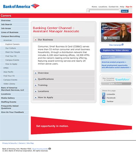 bank america website bank of america 2010 global cus caign website on