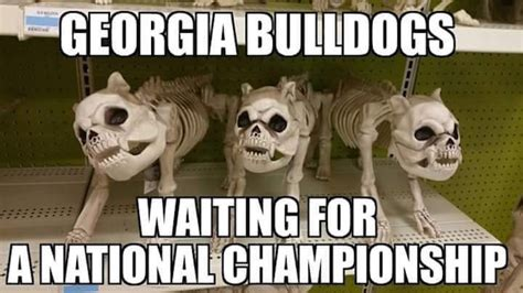 Georgia Bulldog Memes - best georgia football memes from the 2015 season