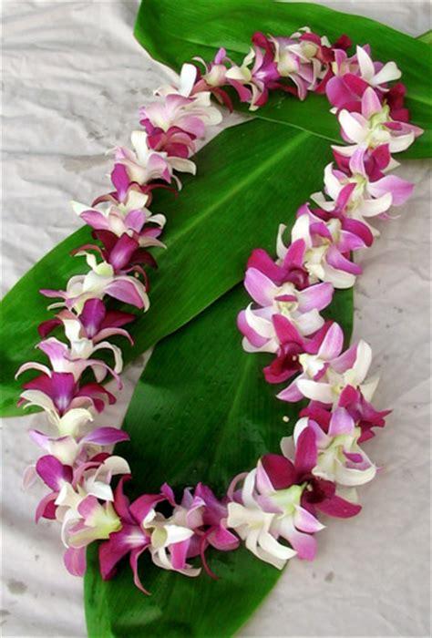Kona Weddings – Cristi & Jon Wedding   Kona, Big Island of Hawaii   Hawaii