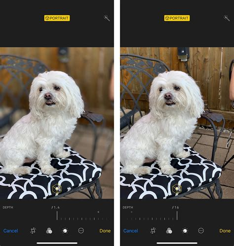 live depth of field coming to iphone xs xs max