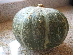 kabocha squash stuffed with chinese style spare ribs