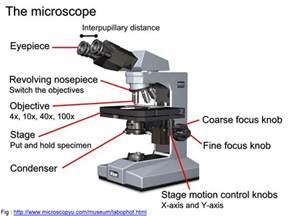 block1 the use of microscope