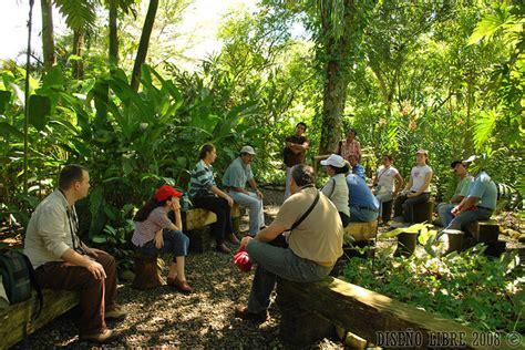 imagenes de jardines botanicos en mexico jard 237 n bot 225 nico faustino miranda todo chiapas