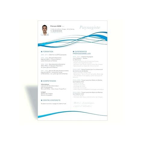Cv Model En Francais Word Gratuit by Model Cv Professionnel Word Gratuit Comment Faire Un Cv En