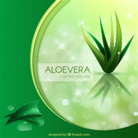 Sho Natur Aloe Vera aloe natur vektoren fotos und psd dateien kostenloser