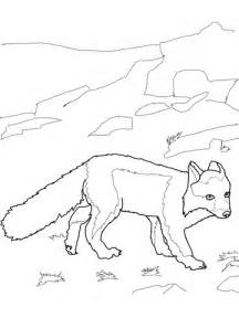 arctic fox coloring pages freecoloring4u com